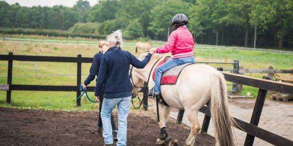 Vacature Instructeur paardrijden