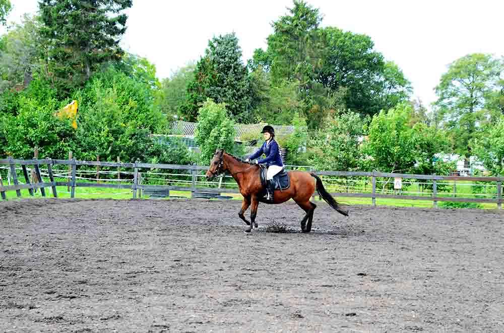 Paardrijden bij De Gravenruiters