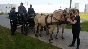 20170421 Koningsspelen (7)